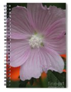 Beauty Of The Hollyhock  Spiral Notebook