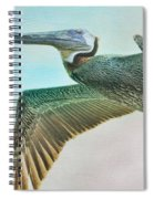 Beauty Of The Pelican Spiral Notebook
