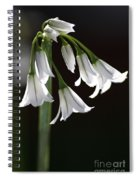 Beauty Of The Snowdrops Spiral Notebook