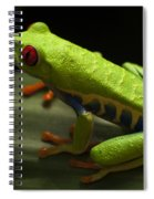 Beauty Of Tree Frogs Costa Rica 2 Spiral Notebook