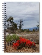 Beauty On 25 Mesa Panoramic Spiral Notebook
