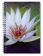 Beauty On The Water Spiral Notebook
