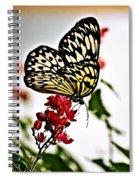 Beauty Wing Spiral Notebook