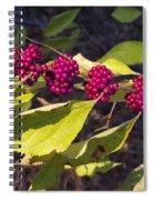 Beautyberry Spiral Notebook