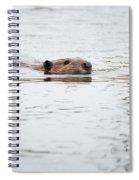 Beaver Spiral Notebook