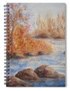 Beaver Pond Spiral Notebook
