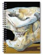 Beaver Skull 1 Spiral Notebook