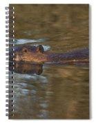 Beaver Swimming Spiral Notebook