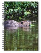 beaver swims in NC lake Spiral Notebook