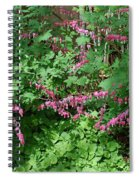 Bed Of Bleeding Hearts Spiral Notebook