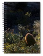 Bed Of Cactus Spiral Notebook