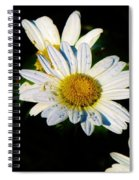 Bed Of Daisy's For Daisy Spiral Notebook