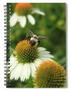 Bee 7 Spiral Notebook