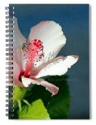 Bee A Flower Spiral Notebook