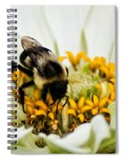 Bee All That You Can Bee Spiral Notebook