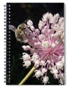 Bee And Allium Spiral Notebook
