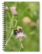 Bee And Thistle Spiral Notebook