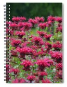 Bee Balm Bounty Spiral Notebook