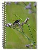 Bee Blue Spiral Notebook