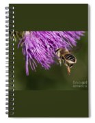 Bee Butt Spiral Notebook