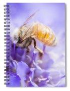 Bee Dream Spiral Notebook