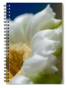 Bee Drinking The Nectar Of Saguaro Cactus Flower Spiral Notebook