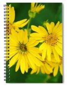 Bee Flower Spiral Notebook