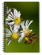 Bee Harvest Spiral Notebook