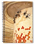 Bee Hive Spiral Notebook