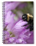 Bee Hug Spiral Notebook
