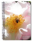 Bee In Camellia Spiral Notebook