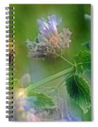 Bee In Catmint Spiral Notebook