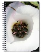 Bee-in Spiral Notebook