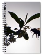 Bee In Flight  Spiral Notebook