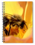 Bee In Flower Spiral Notebook