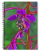 Bee In Hdr Spiral Notebook
