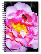 Bee Landing Spiral Notebook