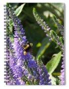 Bee Lavendar Spiral Notebook