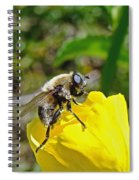 Bee Mimic On Primrose Spiral Notebook