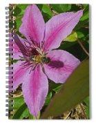 Bee My Clematis Spiral Notebook