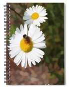 Bee On A Daisy Spiral Notebook