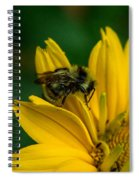 Bee On A Quest Spiral Notebook