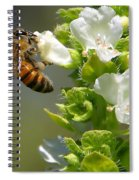 Bee On Basil Spiral Notebook