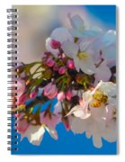 Bee On Blossom Spiral Notebook