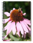 Bee On Coneflower Spiral Notebook