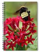 Bee On Flower Cluster Spiral Notebook