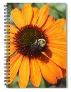 Bee On Flower Spiral Notebook