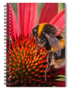 Bee On Red Coneflower 2 Spiral Notebook