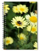 Bee On Yellow Spiral Notebook