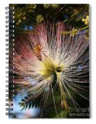 Bee Patient Spiral Notebook